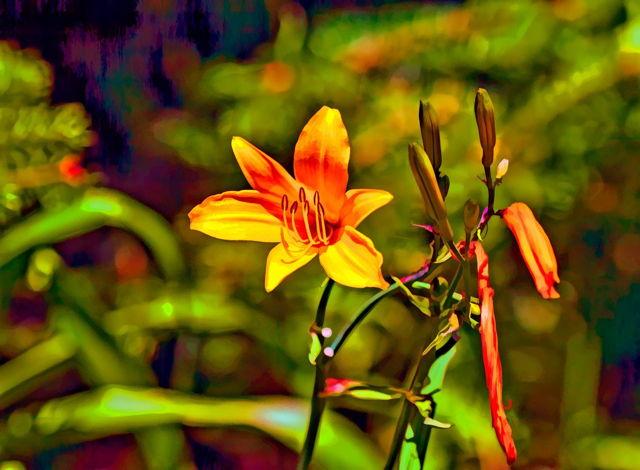 Flower Painta