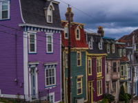 Victoria Street  purple