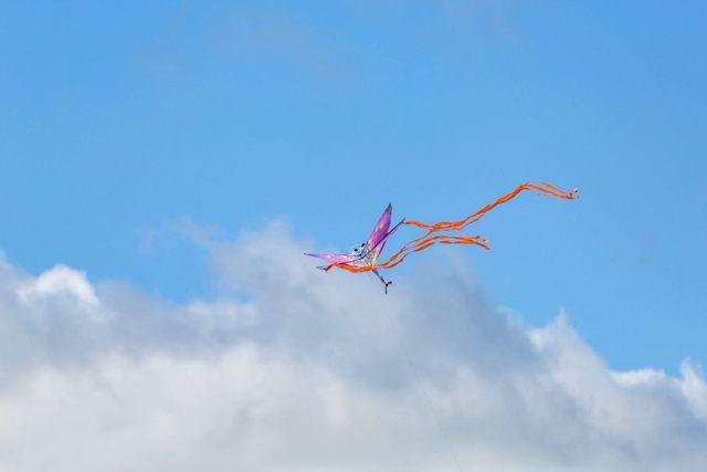Childs kite
