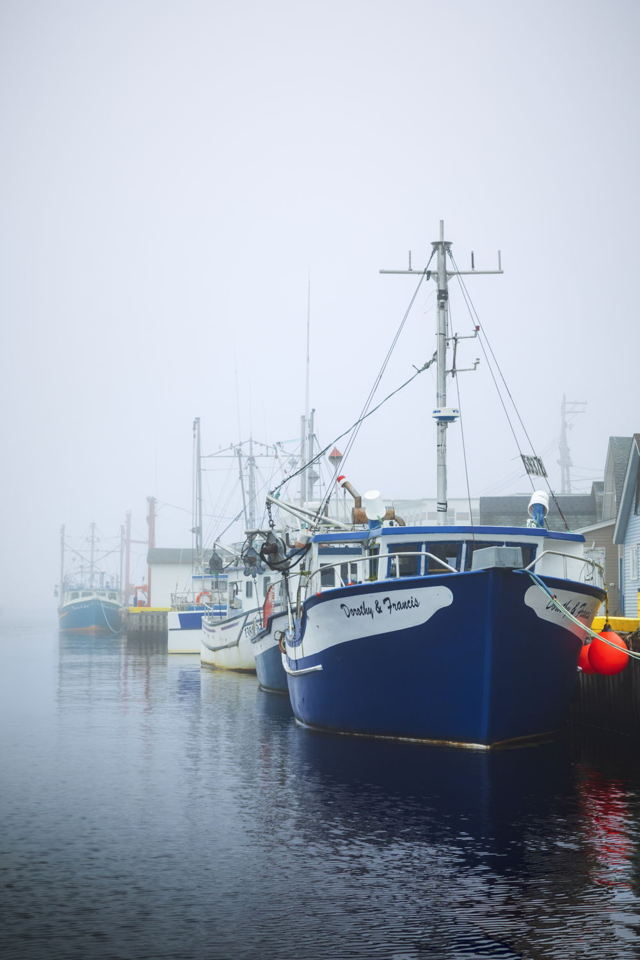 The Boats Of Petty Harbour