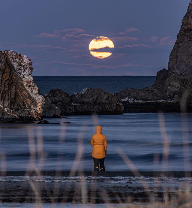 Salmon Cove Moon