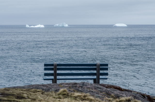 A view from a Petty Harbour bench